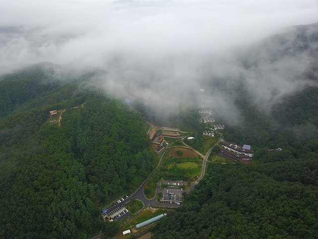 letecký snímek lesa